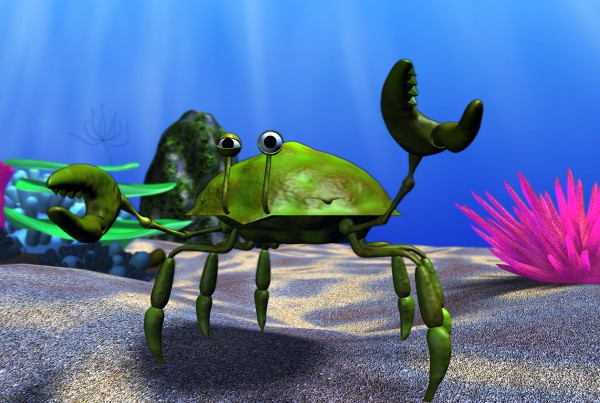Finding nemo Crab